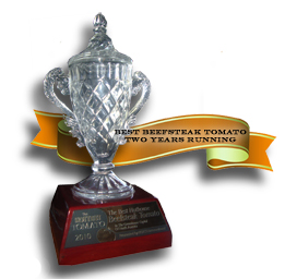 trophy_ribbon_0929_small.jpg